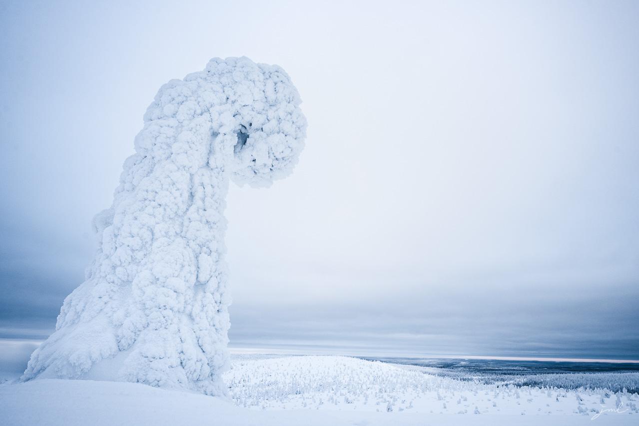 Paysage de Laponie