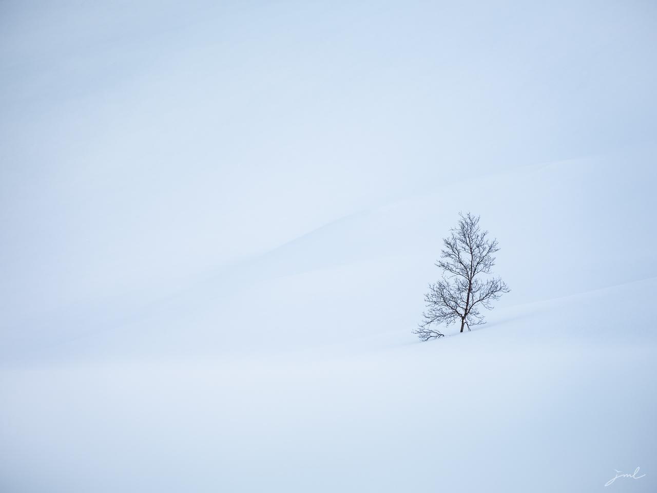 Pureté hivernale